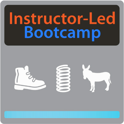 Instructor-Led Bootcamp