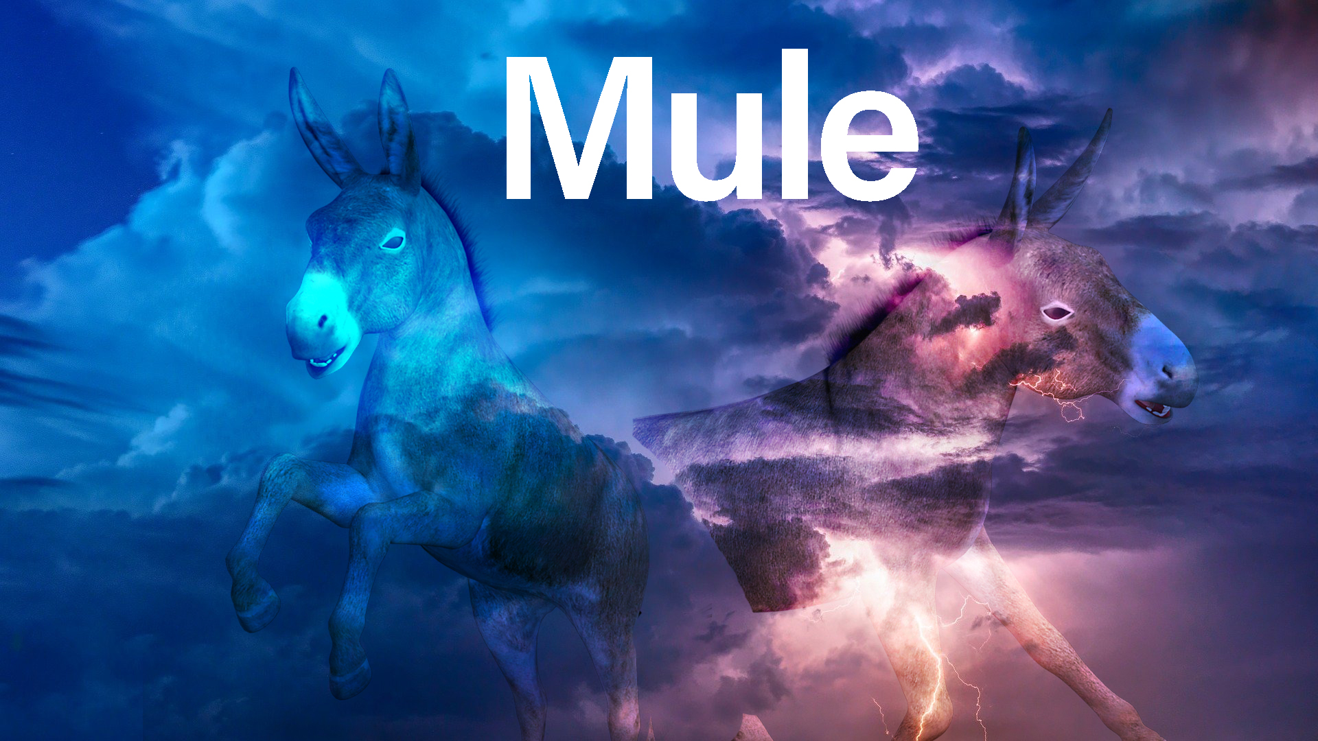 Introduction To Mule